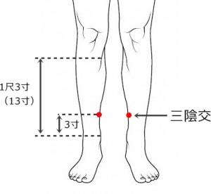 経絡経穴 足の太陰脾経 三陰交