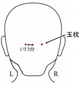 経絡経穴 足の太陽膀胱経 玉枕