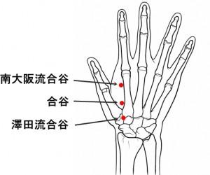 経絡経穴 手の陽明大腸経 合谷