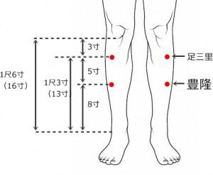 経絡経穴 足の陽明胃経 豊隆