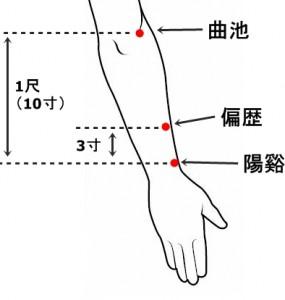経絡経穴 手の陽明大腸経 偏歴