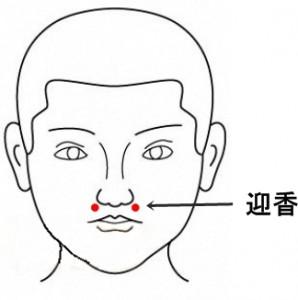 経絡経穴 手の陽明大腸経 迎香