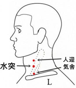 経絡経穴 足の陽明胃経 水突
