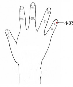 経絡経穴 手の太陽小腸経 少沢