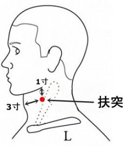 経絡経穴 手の陽明大腸経 扶突
