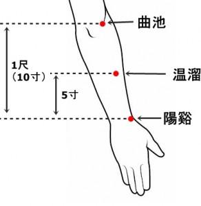 経絡経穴 手の陽明大腸経 温溜