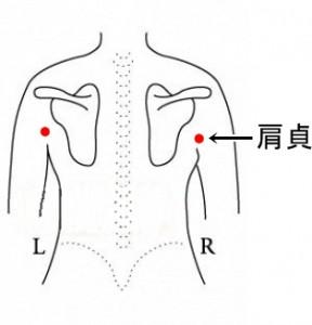 経絡経穴 手の太陽小腸経 肩貞