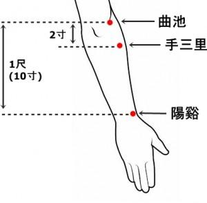 経絡経穴 手の陽明大腸経 手三里