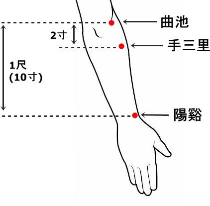 「手 三里」の画像検索結果