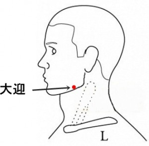 経絡経穴 足の陽明胃経 大迎