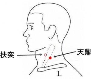 経絡経穴 手の陽明大腸経 天鼎