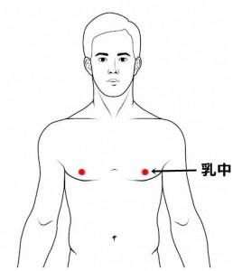 経絡経穴 足の陽明胃経 乳中
