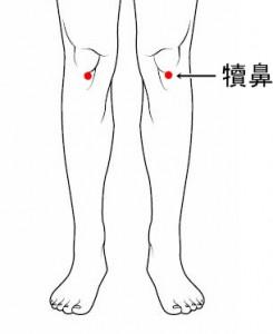 経絡経穴 足の陽明胃経 犢鼻
