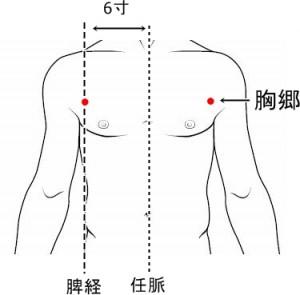 経絡経穴 足の太陰脾経 胸郷