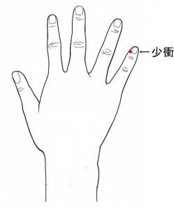 経絡経穴 手の少陰心経 少衝