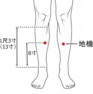 経絡経穴 足の太陰脾経 地機
